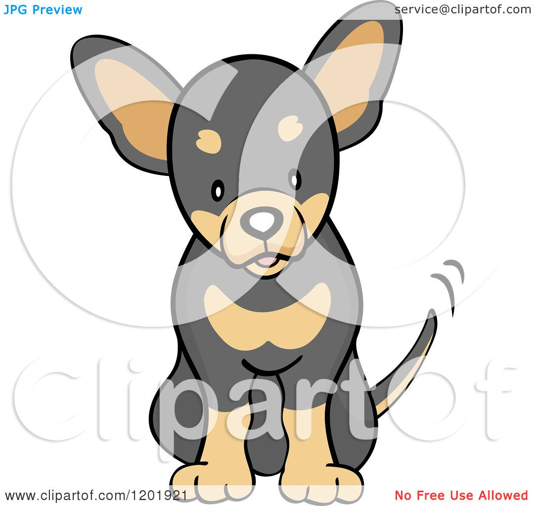 Cartoon Of A Cute Black And Tan Chihuahua Dog Sitting And Wagging