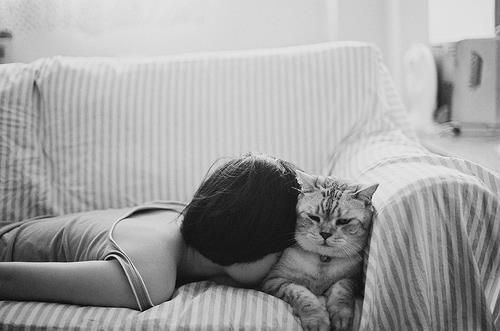 Buena almohada