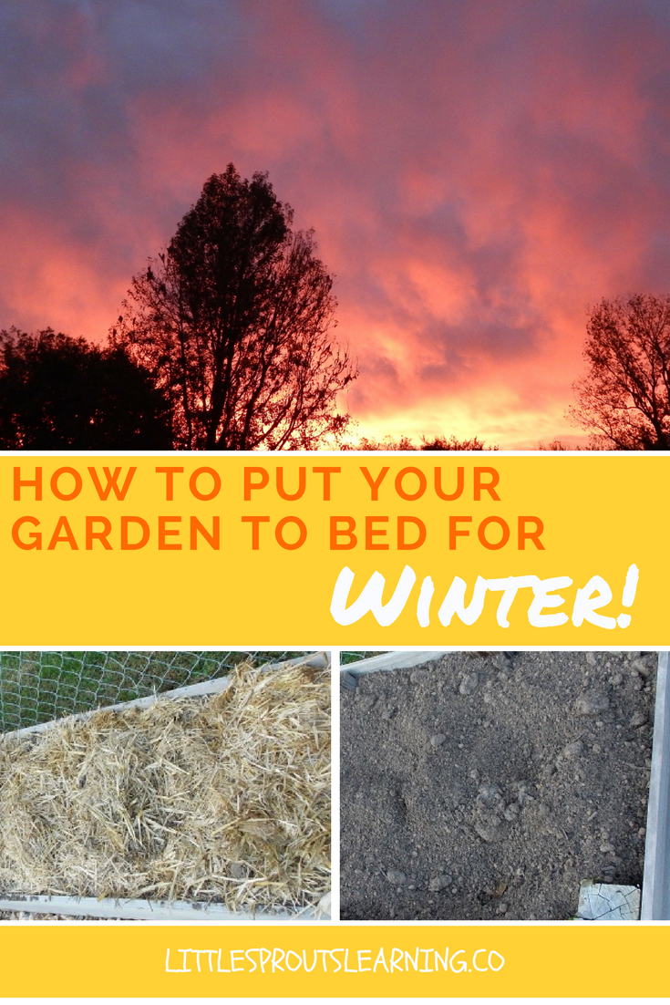 how to put your garden to bed for winter sprouts winter and gardens
