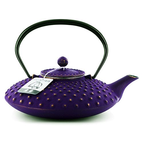 Fish Scale Japanese Cast Iron Teapot Teasetsbuy Tea Pots