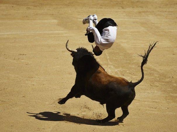 """Um """"recortador"""" salta sobre um touro durante a tourada de Madri, na Espanha - http://epoca.globo.com/tempo/fotos/2014/05/fotos-do-dia-2-de-maio-de-2014.html (Foto: Daniel Ochoa de Olza/AP Photo)"""
