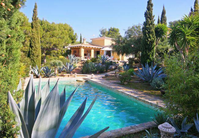 Superbe villa de vacances avec piscine priv e calpe - Villa piscine privee ...