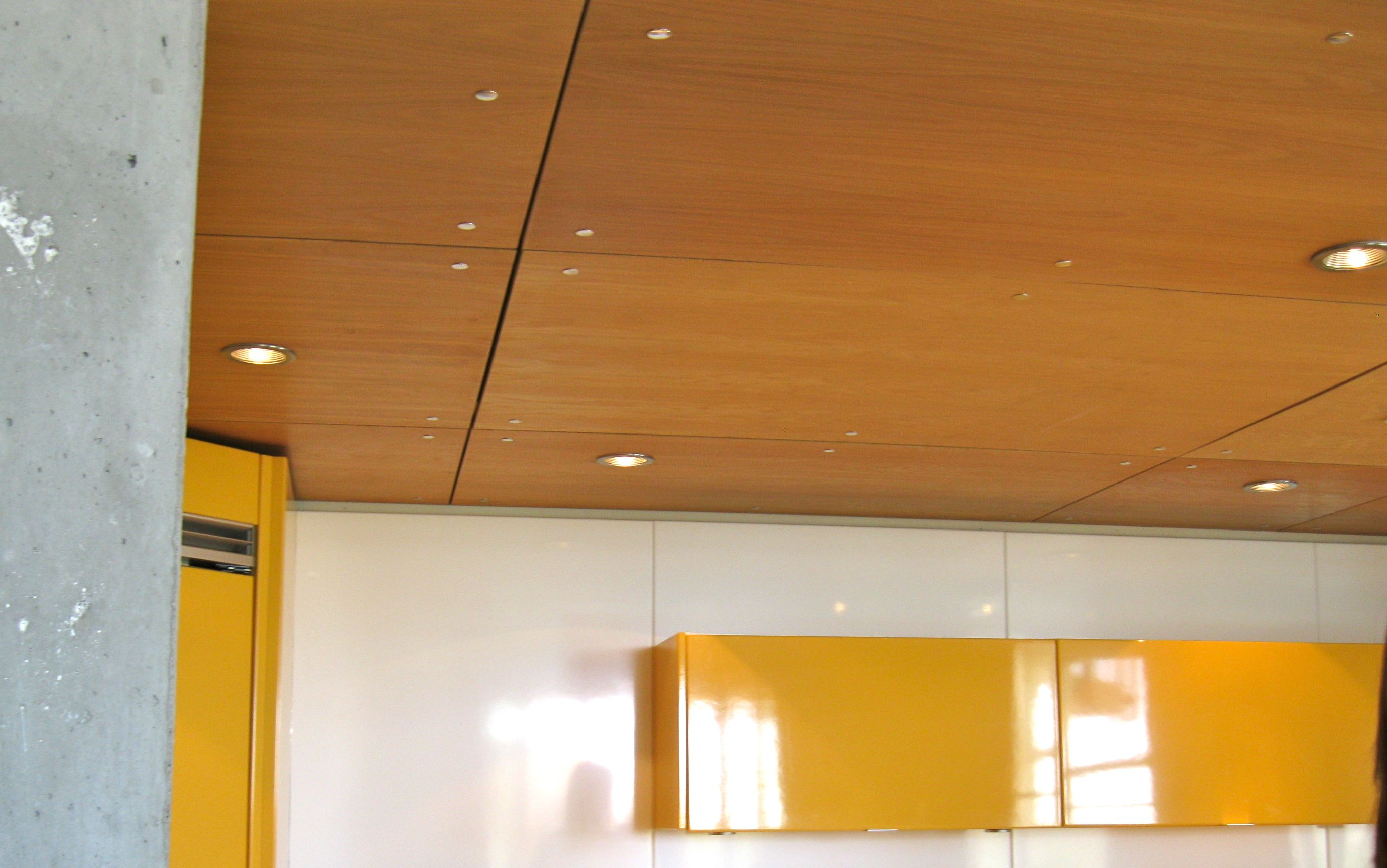 1960 Style Ceilings Tiles Plywood Ceiling With Stainless