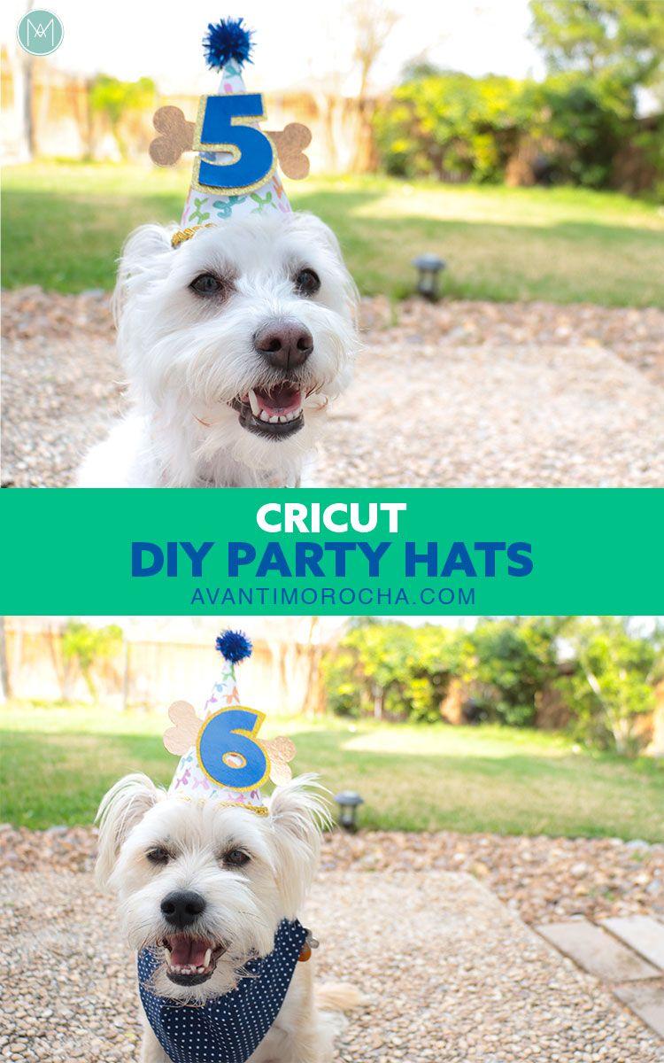 Dog Birthday Party Hats Gorro De Fiesta De Cumpleanos De Mascotas Diy Party Hats For Dogs Diy Birthday Hat For Dog Dog Party Hat