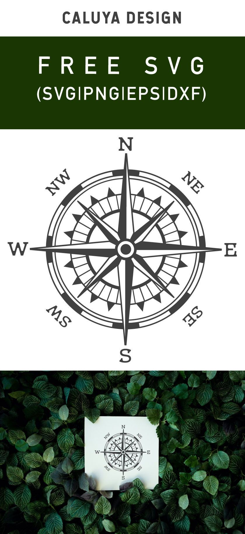Free Vintage Compass SVG, PNG, EPS & DXF by in 2020 Free