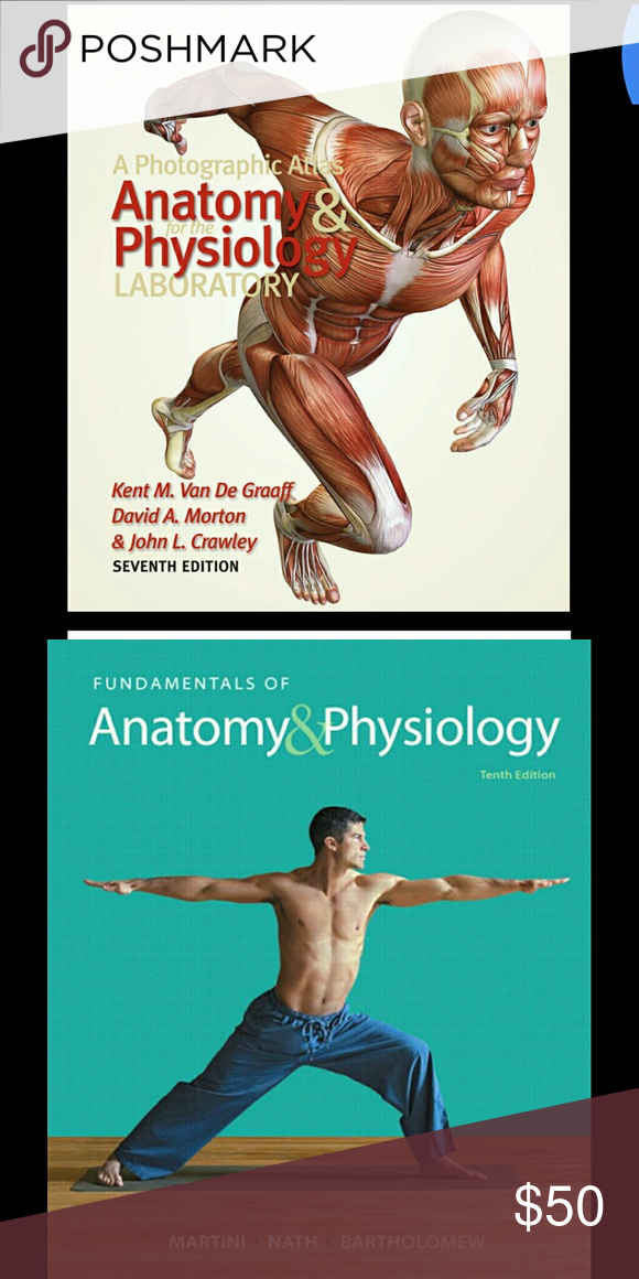 Anatomy and Physiology pdf version book PDF version! Easier ...