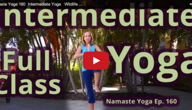 200 free yoga classes online with images  online yoga
