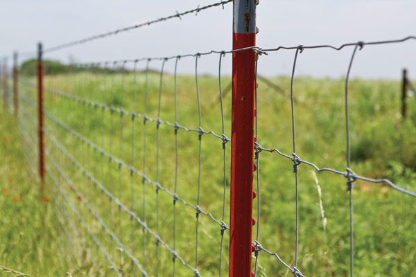 Woven wire fence is expensive and harder to install than either ...