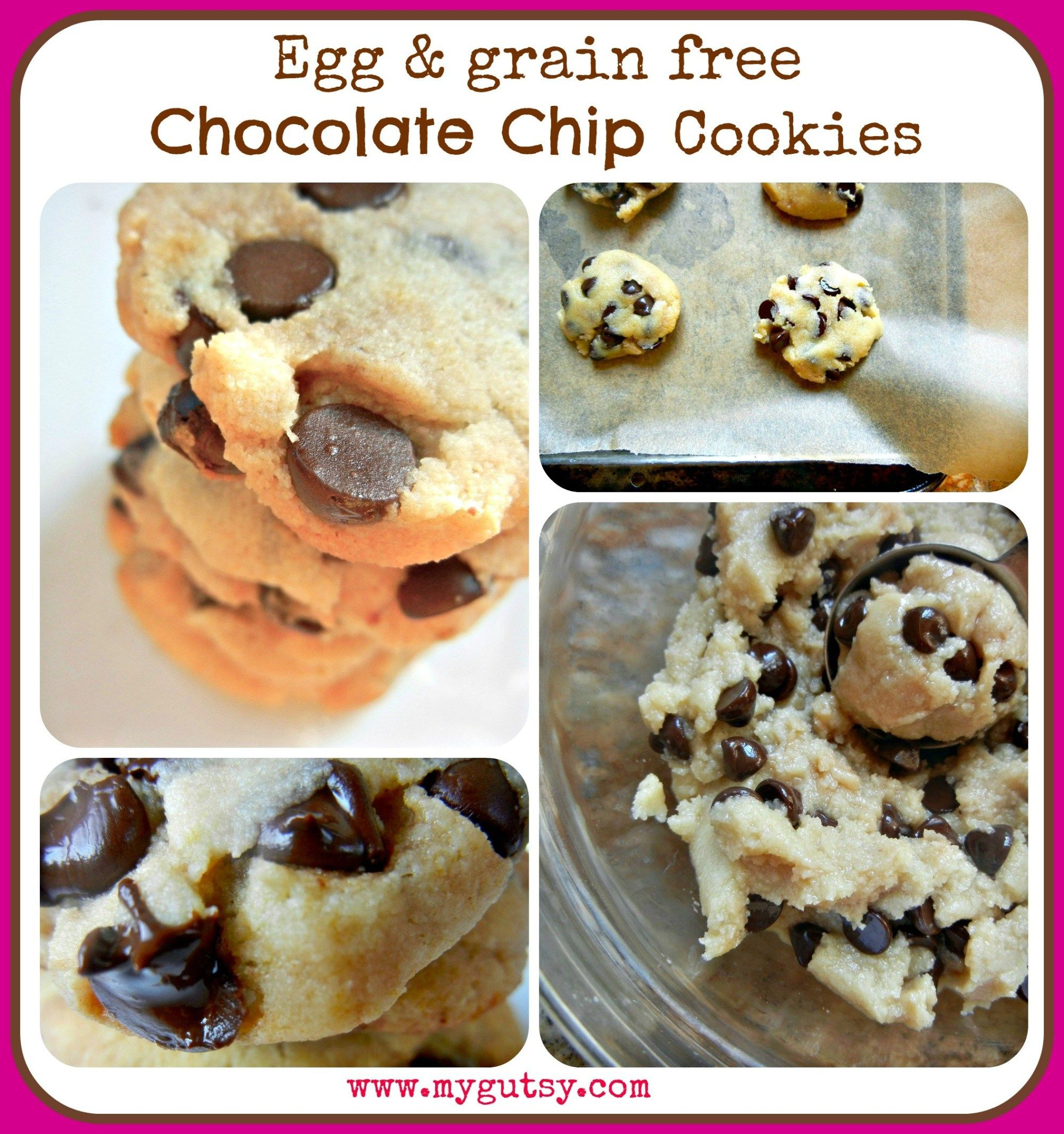 Chocolate chip cookies gaps approved glutenfree paleo