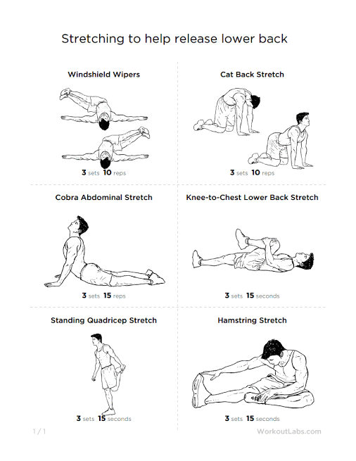 cat cow pose google search yoga lower back pain Back Stretches Diagrams Back Stretches Diagrams #9