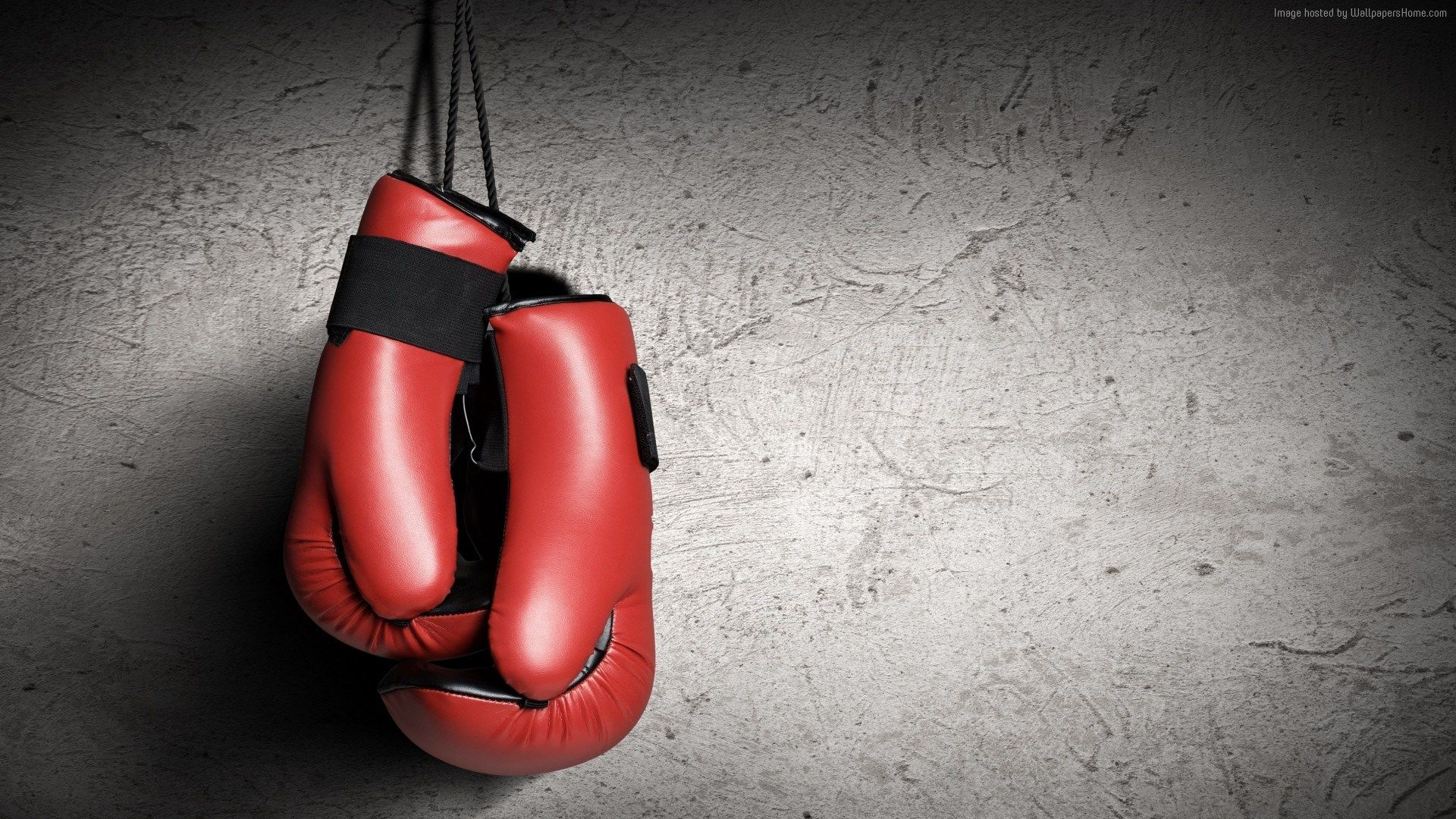 Boxing Gloves Wallpaper Sport