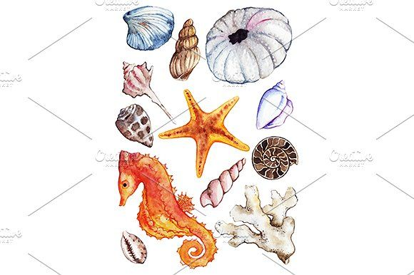 Watercolor sea ocean set vector by Art By Silmairel on @creativemarket