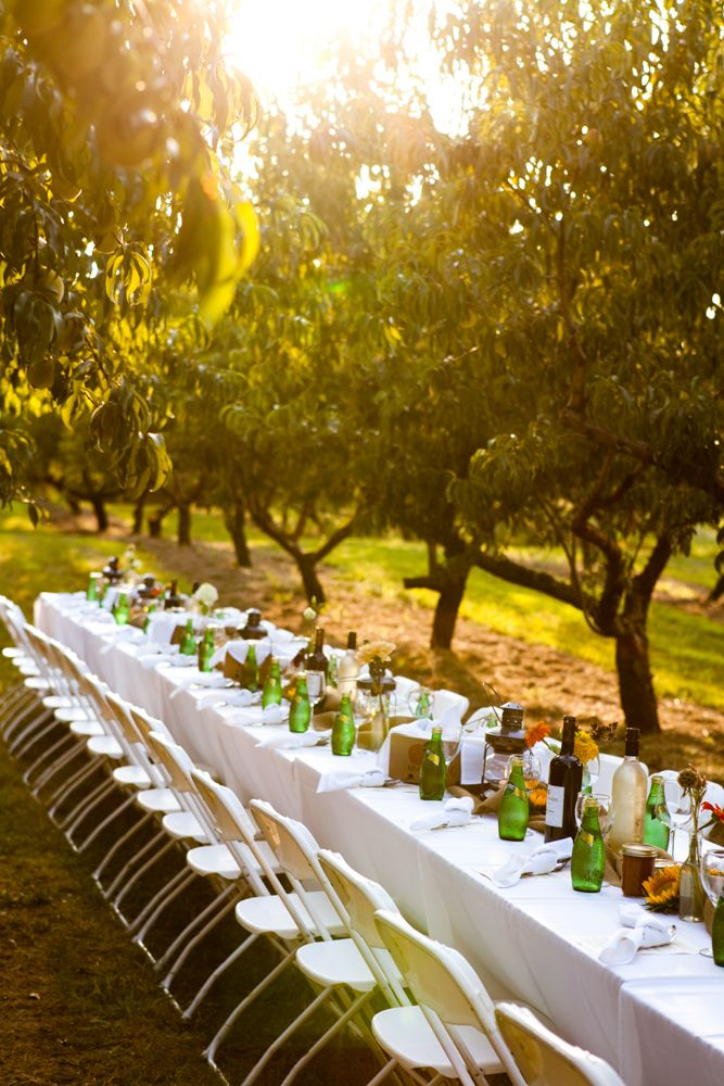 Attend a Farm to Table Dinner like this one from Branstool