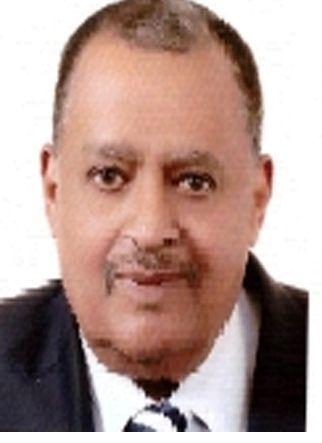 محمد آدم عثمان