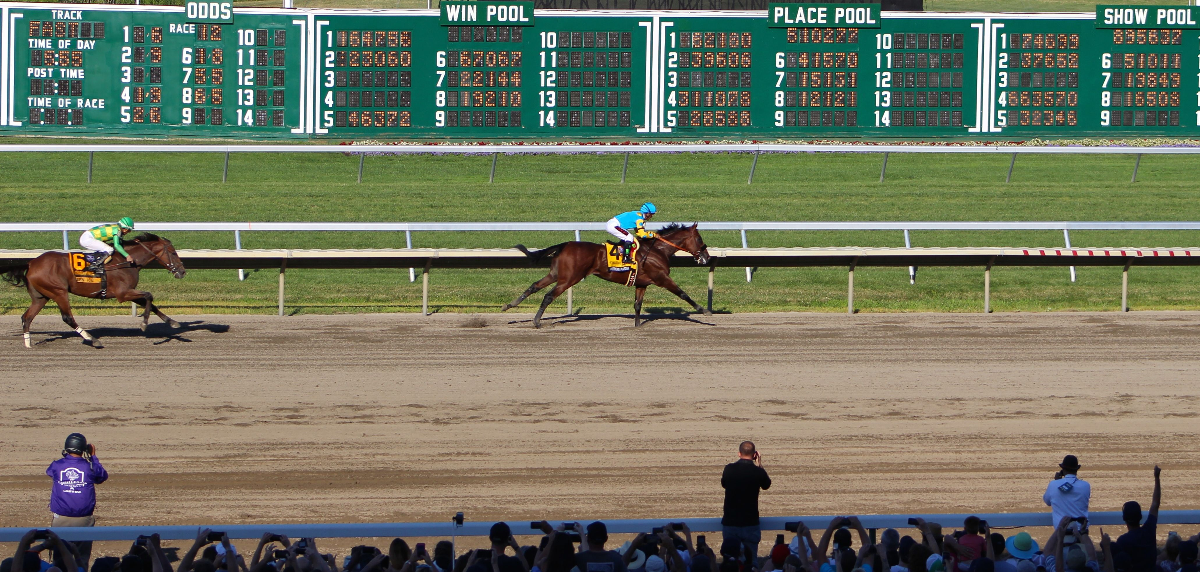 Our Pics Of American Pharoah Haskell Invitational Win Pool Went