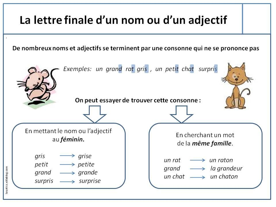 cours de grammaire et orthographe pdf