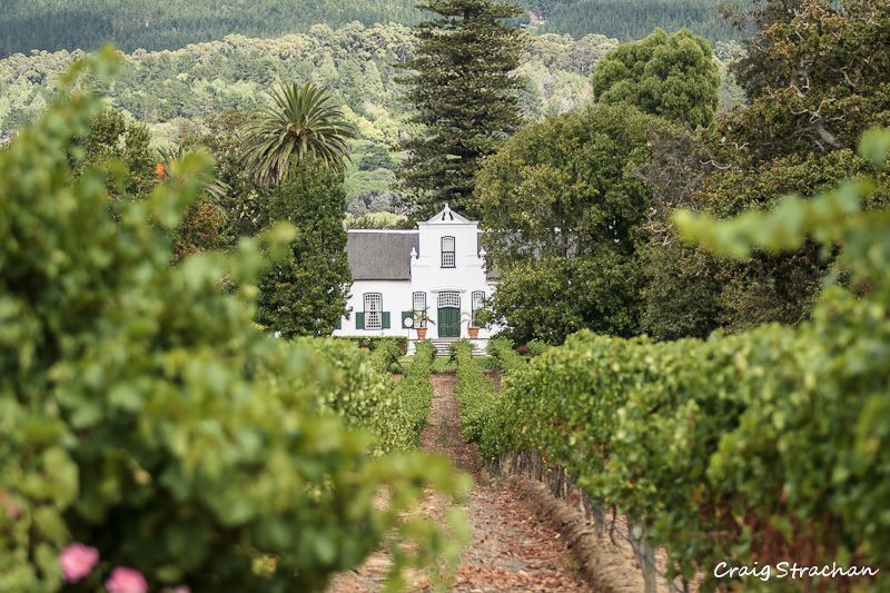 """Buitenverwachting in Constantia, which loosely translated means """"beyond expectations""""."""