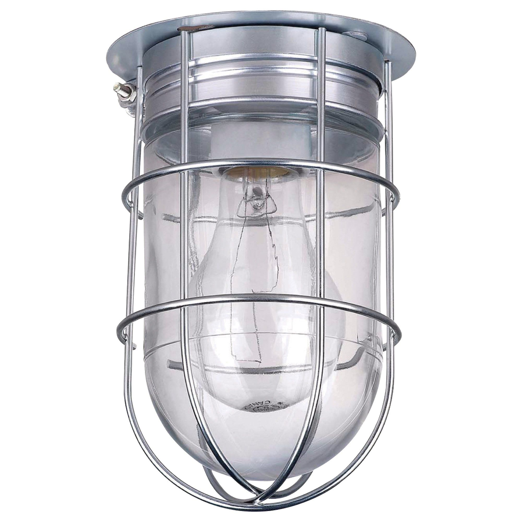 Canarm Ceiling/Wall Outdoor/Indoor Barn Light with Cage 4