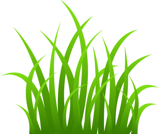 Grass Clip Art Grass On Transparent Background Grass