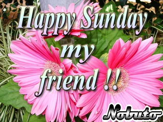 Happy Sunday Graphics Code