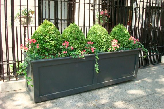 Looking for Container Gardening Ideas?: Small-Space Splendor ...