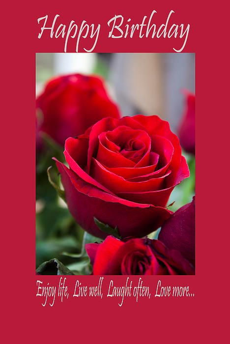 Happy Birthday Greeting Card With Red Rose