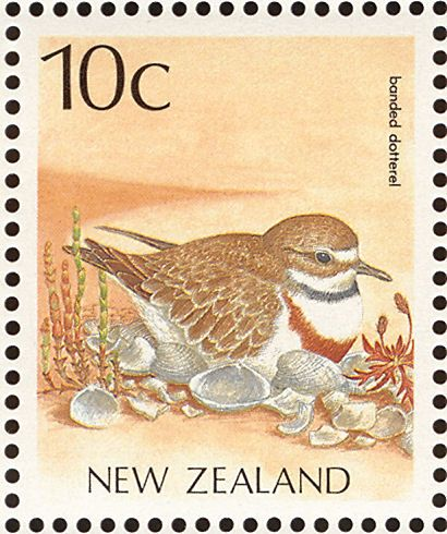 Double-banded Plover stamps - mainly images - gallery format