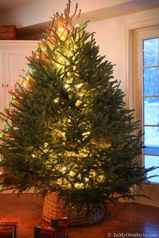How To String Lights On A Christmas Tree String Lights In The Center Of The Tree So That Your Tree Looks Like