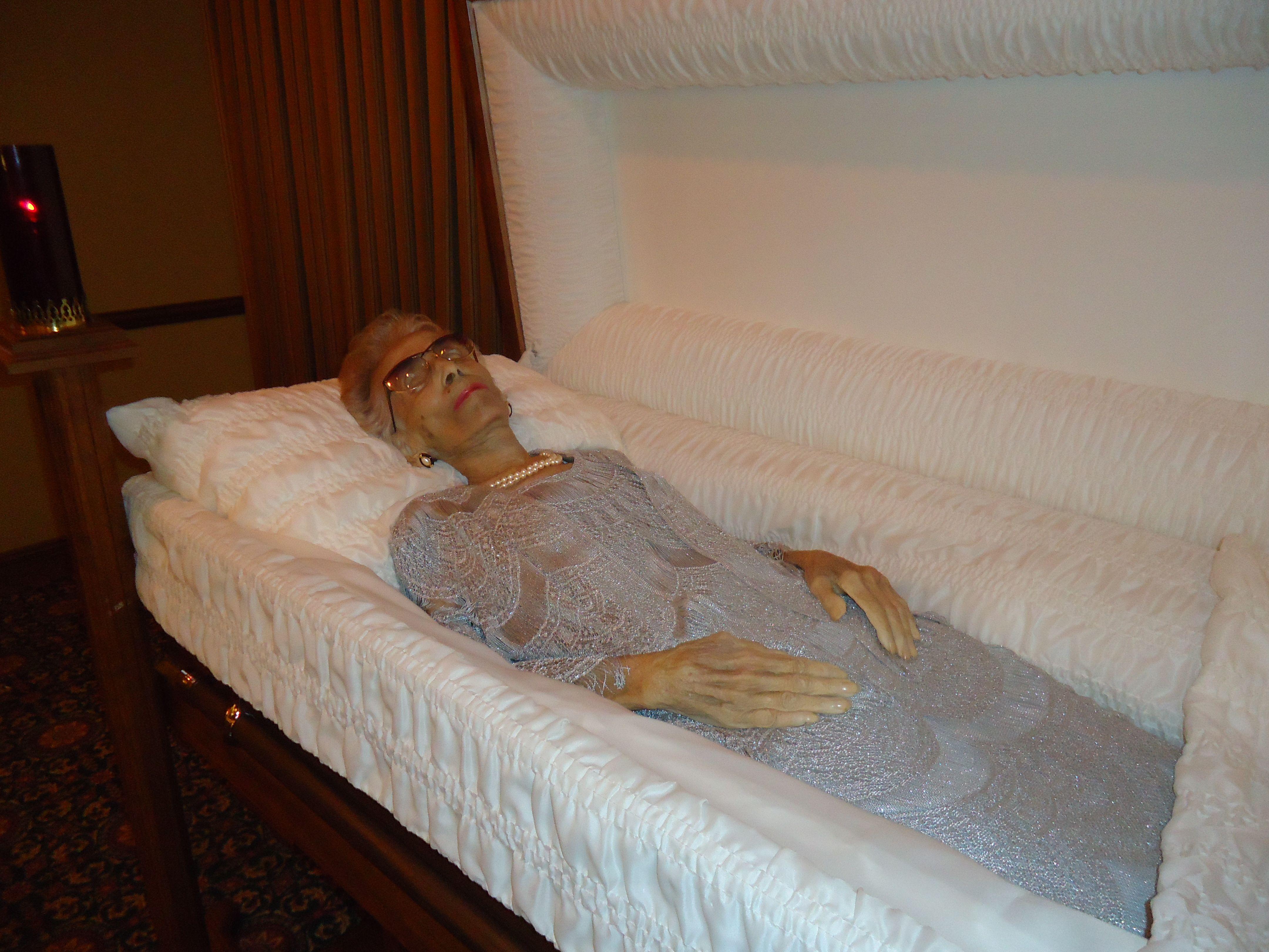 dead bodies in coffins wwwpixsharkcom images