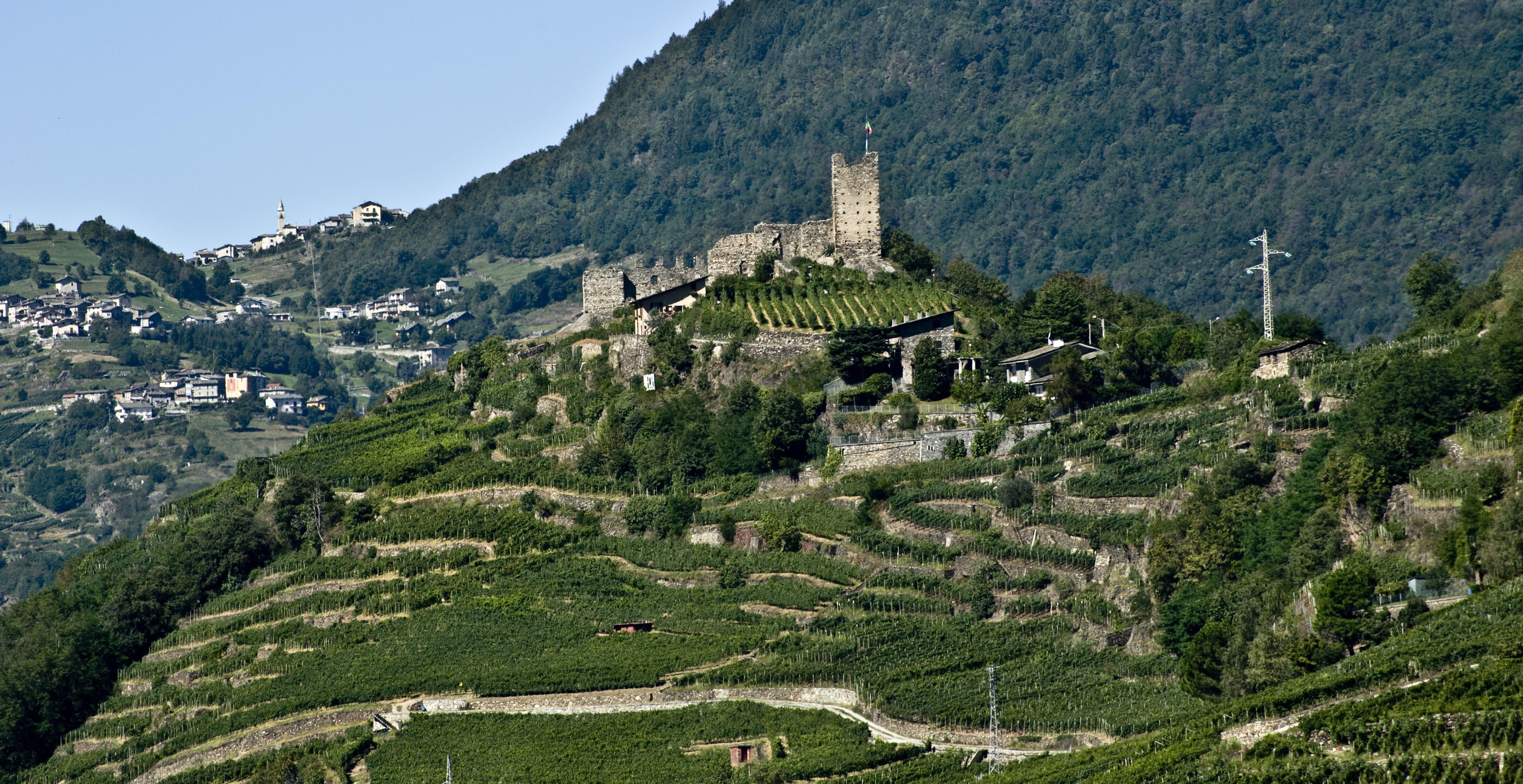 Vigneti Di Castel Grumello Sondrio Landscape Panorama