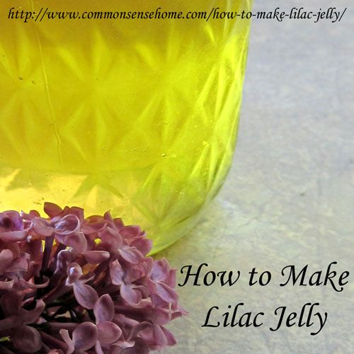 How To Make Lilac Jelly Yes Lilacs Are Edible As Well As Beautiful Recipe Edible Flowers Homemade Jam Jelly