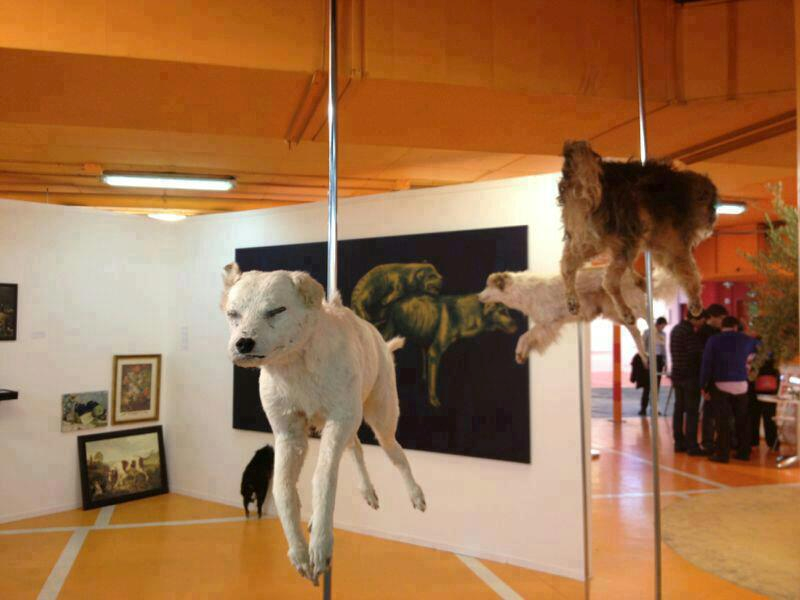 MADRID – ESPAÑA – FIRMEN LA PETICION POR FAVOR!!!   CIERRE DE LA EXPOSICIÓN DE CADÁVERES DE ANIMALES CALLEJEROS DE VITOR MIZAEL     http://www.avaaz.org/es/petition/Cierre_de_la_exposicion_de_cadaveres_de_animales_callejeros_de_Vitor_Mizael/?pv=6     LA EXPOSICION DE ARTE MAS ABERRANTE Y DESALMADA DE TODOS LOS TIEMPOS   Diana   ESTA BURLA ESTARÁ EXPUESTA EN GALERÍA 6MAS1 en Madrid Es posible tolerar todo esto?