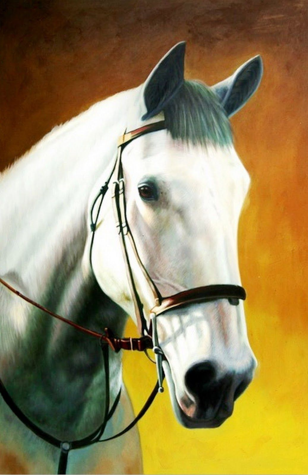 Cuadros cabezas de caballos oleo 1037 1600 pintura b hos pinterest cuadros de - Cabezas animales tela ...