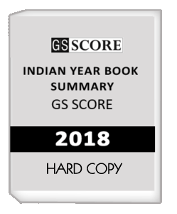 the year of the book summary