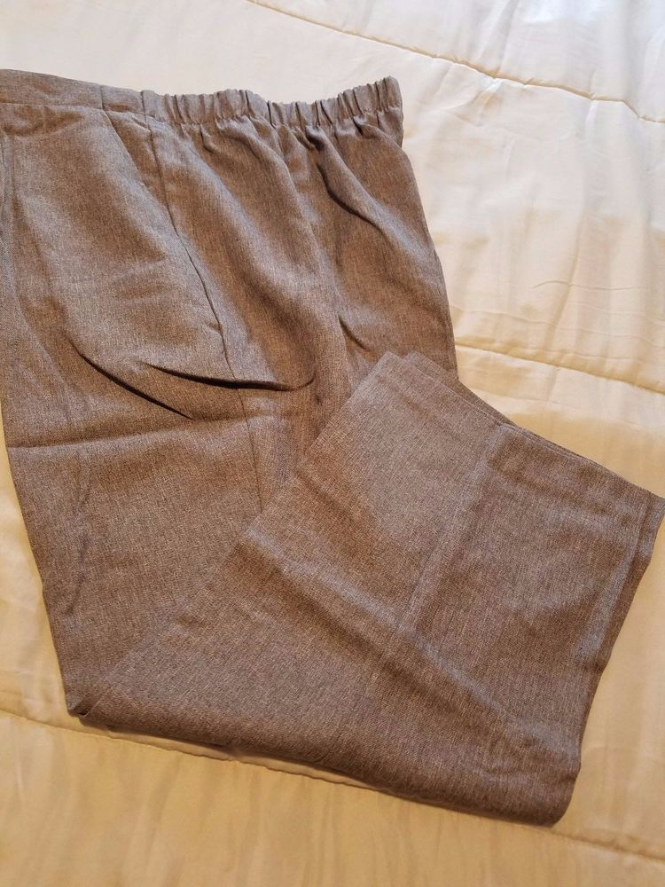 Details About Briggs New York Womens Dress Casual Pants Plus Size