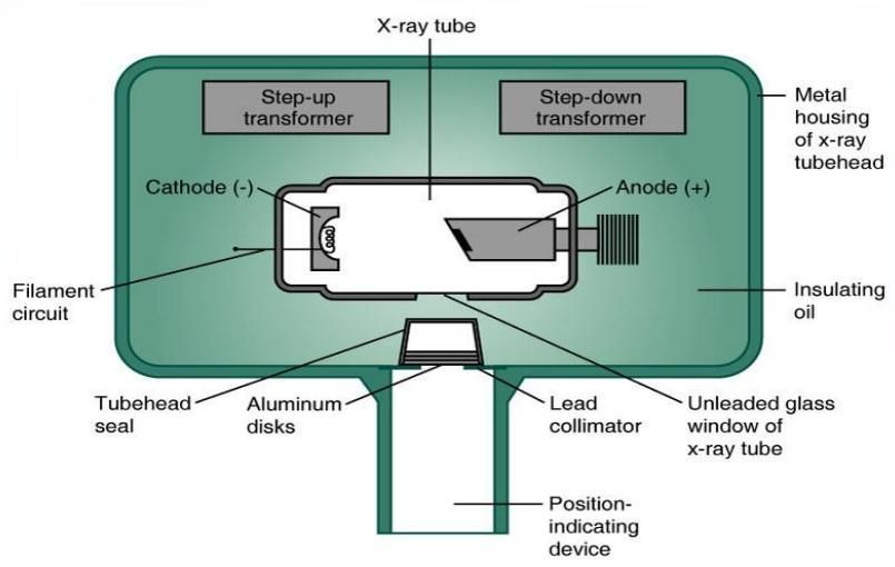 Image Result For X Ray Tube Head Dental Hygiene Board Review