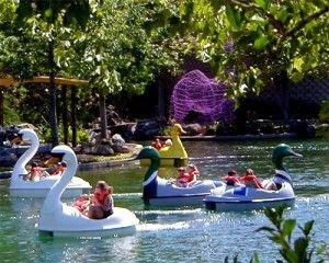 2aa5ed0bd4bb79255dc49dfe4bff81f1 - Gilroy Gardens Family Theme Park Tickets