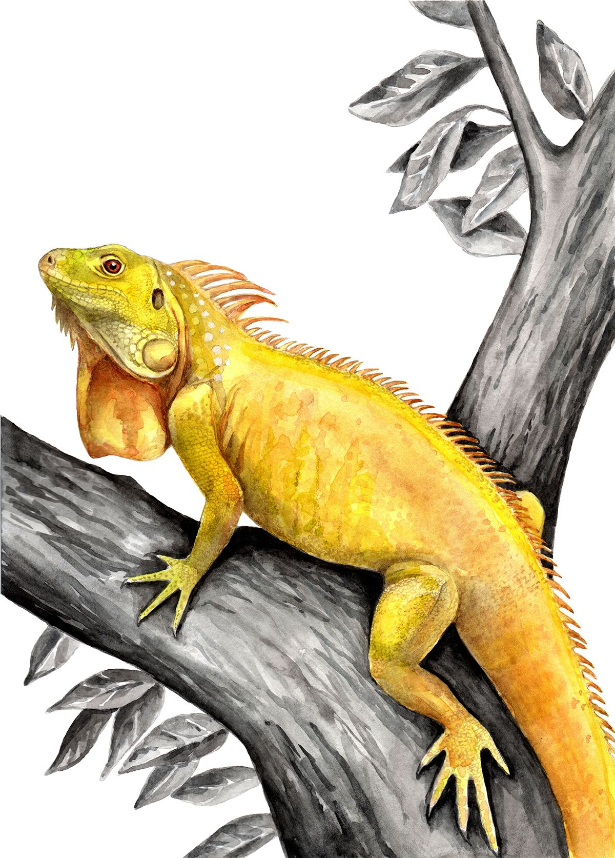 Yellow Lizard Print Reptile Posters Lizard Wall Art Reptile Etsy In 2021 Iguana Reptiles Crocodile Illustration