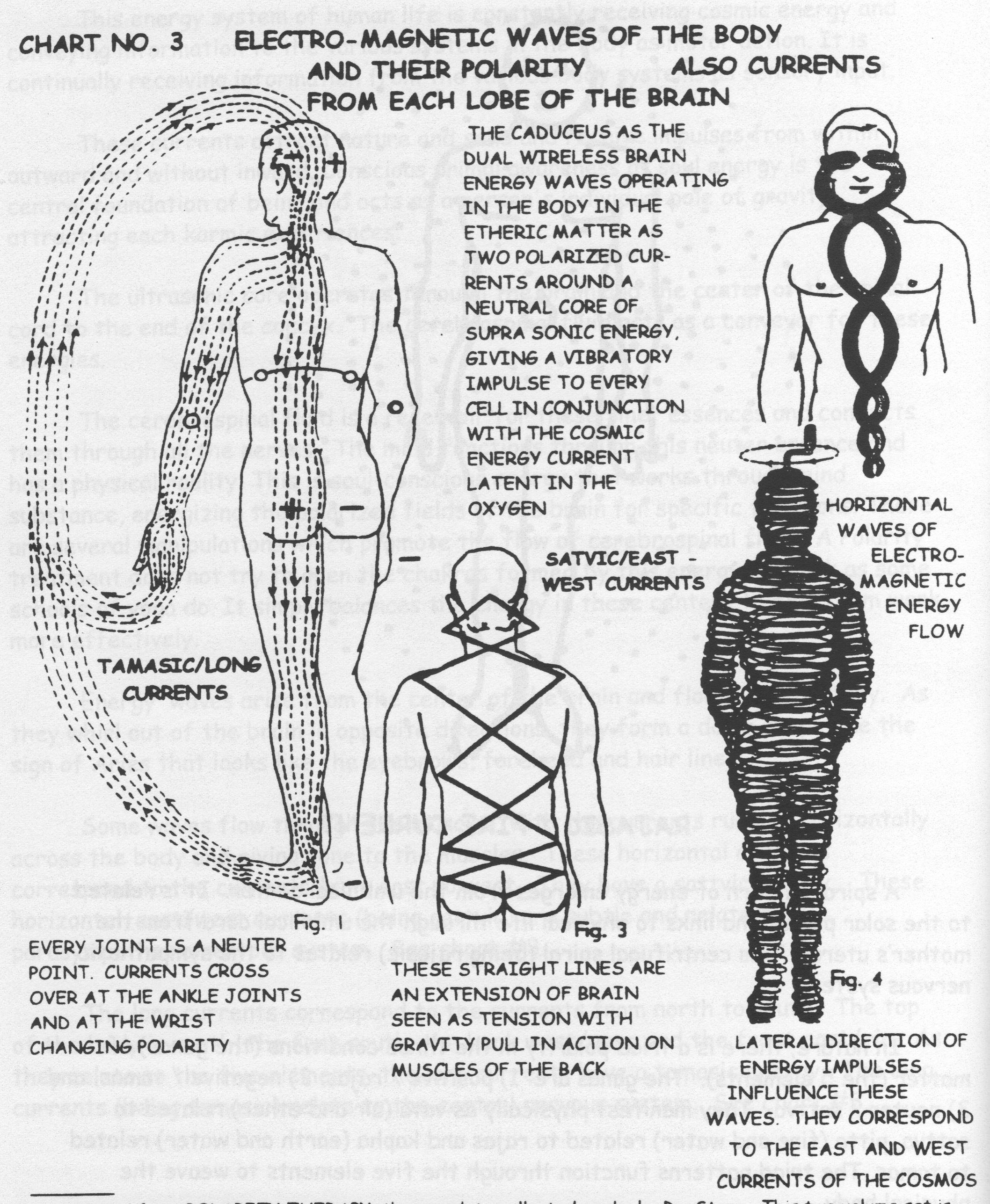 Collection of Human Frequencies - Reflexology - Chakra Charts ...