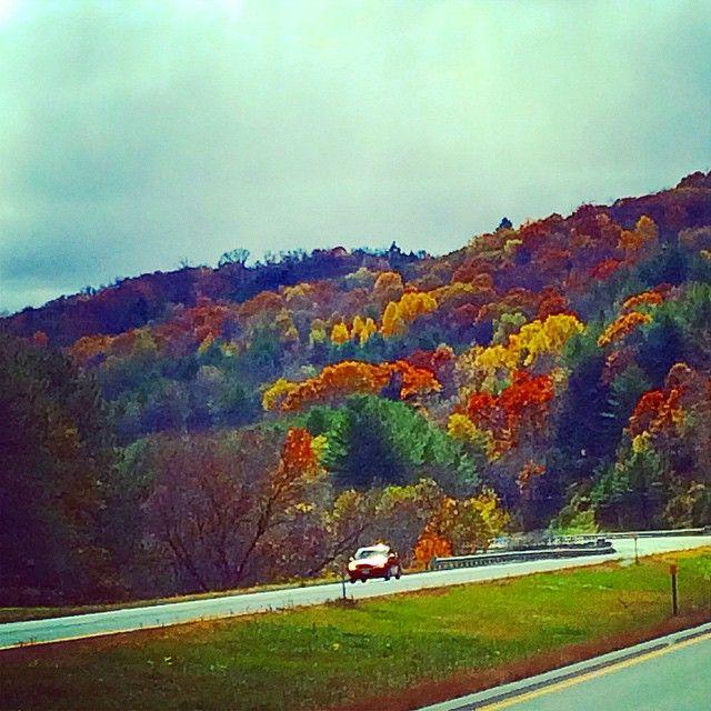 Peak foliage New Hampshire