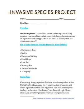 Invasive Species Project Rubic | Rubrics | Projects, Rubrics