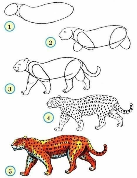 How To Draw Zoo Animals Easily With Images Leopard Drawing