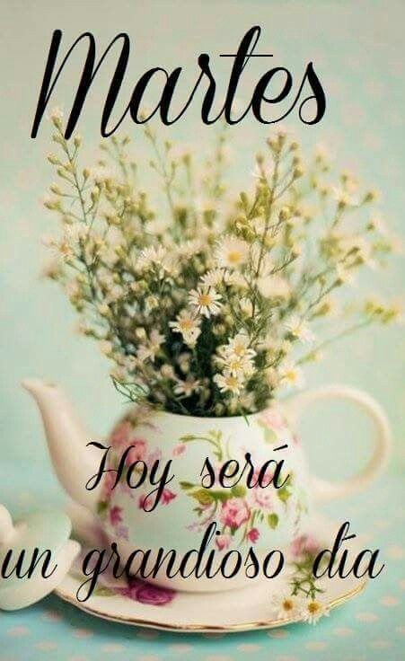 Feliz Martes! | Frases | Pinterest | Frases, Choose life ...