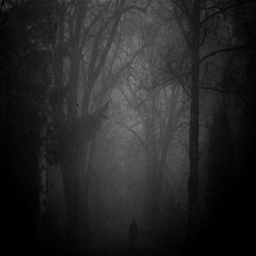 MorbidSilence