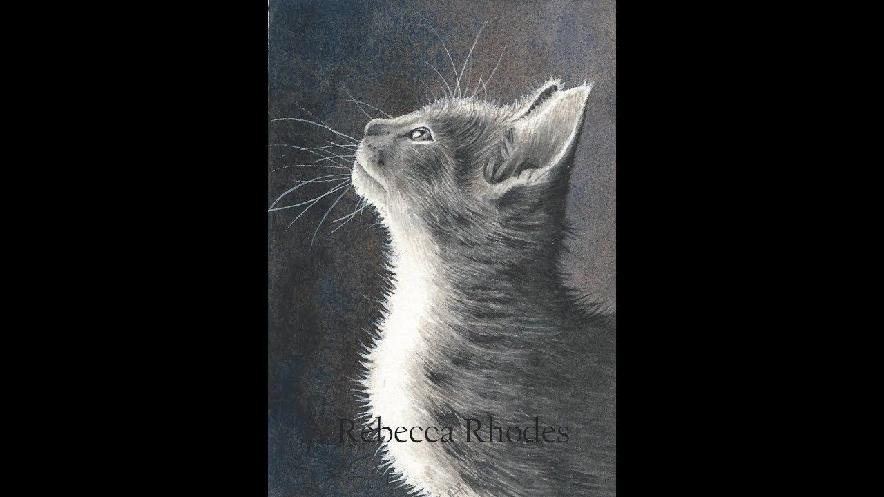 How To Paint A Black And White Kitten In Watercolor Black White