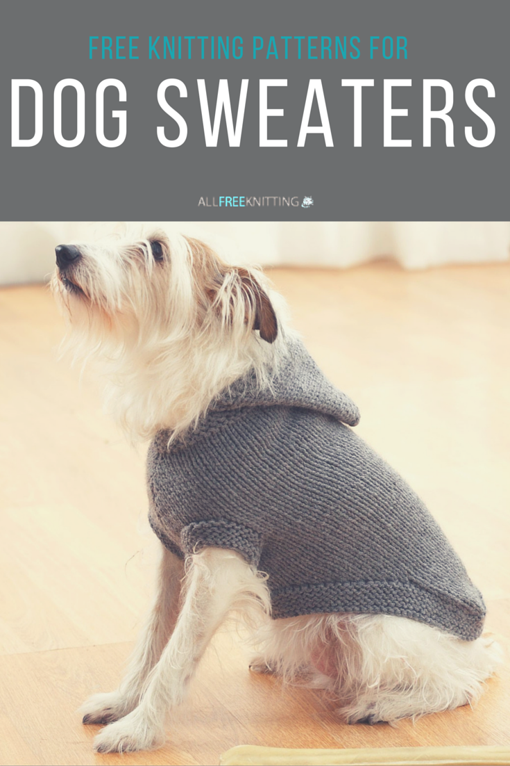 Knit the cutest sweaters for your pooch with these free patterns ...