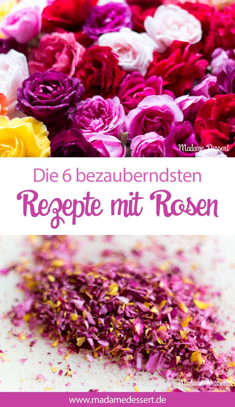 6 herrlich duftende Rosenrezepte  Rosen sind nicht nur besonders hübsch anzuschauen, sondern können auch ganz wunderbar schmecken ❤️    Deshalb gibt es von mir nicht nur Wissenswertes zur Rosenernte, sondern auch 6 bezaubernde Rezepte rund um die Rosenblüte 🌹 Vom Rosensirup bis zur Rosentarte kannst du dich mit allen Sinnen verführen lassen.