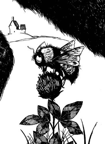 ferdinand the bull: bee