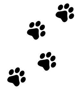 Resultado de imagen para dibujos de huella de gato  DIBUJOS e