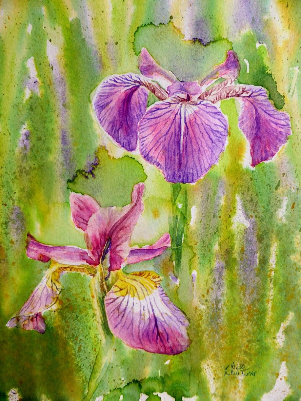 Iris February Birth Flower Nicki Ellul Turner Watercolours